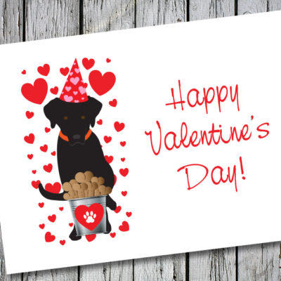 Drake Speaks Black Labrador Happy Valentine's Day Card