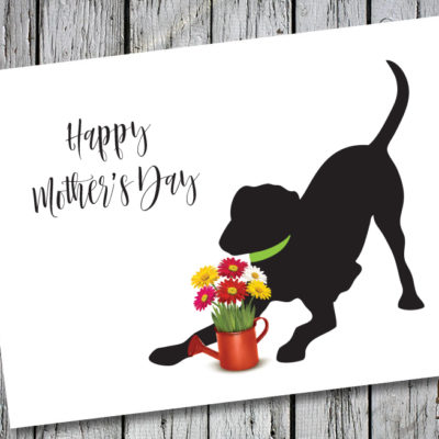 Baby Hank's Black Labrador Happy Mother's Day Card
