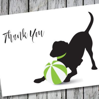 Baby Hank's Black Labrador Thank You Note