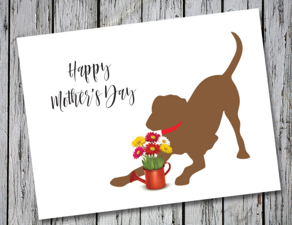 Baby Hank's Chocolate Labrador Happy Mother's Day Card
