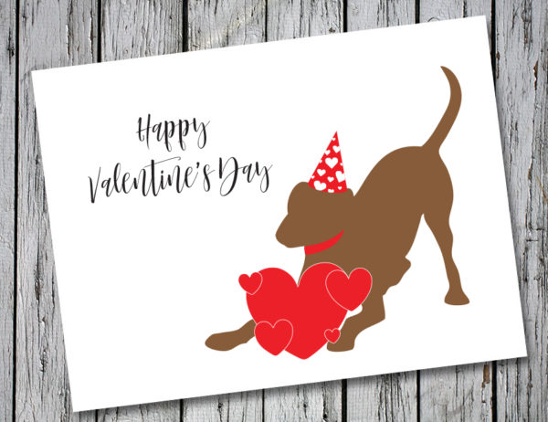 Baby Hank's Chocolate Labrador Happy Valentine's Day Card